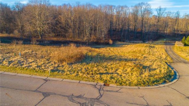 Lot #34 Village Way Dr, Hiram, OH 44234 (MLS #4058688) :: The Crockett Team, Howard Hanna