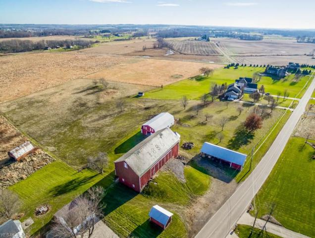 10410 Wolf Ave NE, Hartville, OH 44632 (MLS #4059336) :: RE/MAX Trends Realty