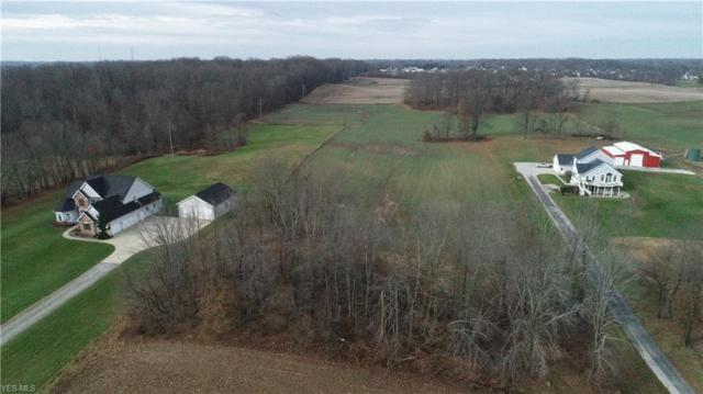 Duquette Ave NE, Hartville, OH 44632 (MLS #4059974) :: RE/MAX Trends Realty