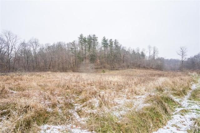 0 Tiny Hollow Rd Rd SW, Port Washington, OH 43837 (MLS #4060540) :: RE/MAX Edge Realty