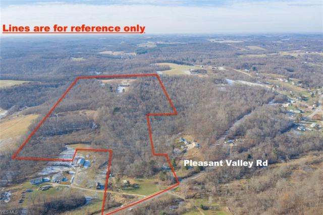 9528 Pleasant Valley Rd, Frazeysburg, OH 43822 (MLS #4060590) :: RE/MAX Trends Realty