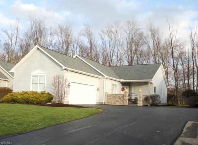 210 Palmer Cir NE, Howland, OH 44484 (MLS #4061057) :: RE/MAX Valley Real Estate