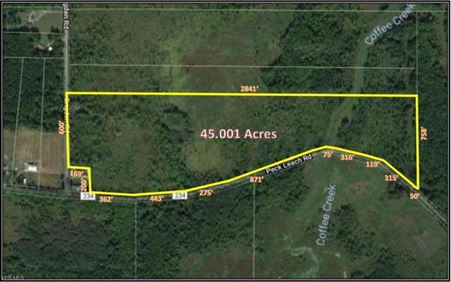 Peck Leach Rd, Farmington Township, OH 44491 (MLS #4061083) :: RE/MAX Valley Real Estate