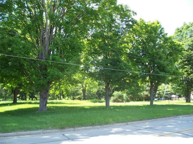 355 N Main St, Rittman, OH 44270 (MLS #4061380) :: The Crockett Team, Howard Hanna