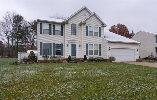 4104 Chapman Dr, Kent, OH 44240 (MLS #4061980) :: RE/MAX Trends Realty