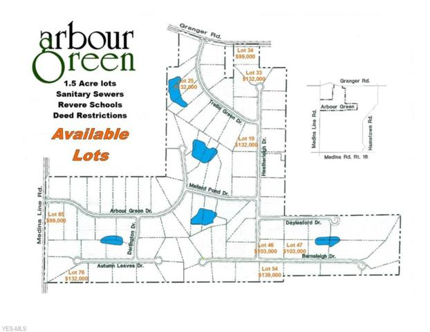 Lot #25 Trellis Green Drive, Akron, OH 44333 (MLS #4062052) :: The Crockett Team, Howard Hanna