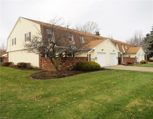 28 New Concord Dr, Mentor, OH 44060 (MLS #4062288) :: RE/MAX Edge Realty