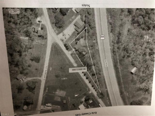 Old State Route 250 Highway, Milan, OH 44846 (MLS #4062617) :: Tammy Grogan and Associates at Cutler Real Estate