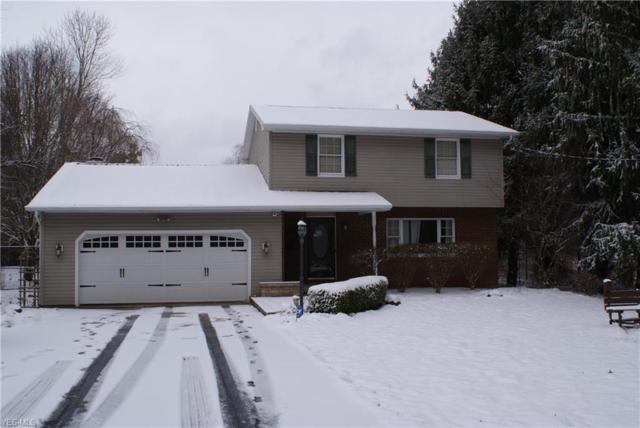 7573 Drake Stateline Rd NE, Burghill, OH 44404 (MLS #4062739) :: The Crockett Team, Howard Hanna