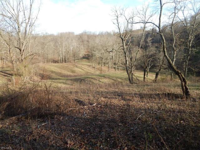 Tuckers Creek, Elizabeth, WV 26143 (MLS #4062801) :: RE/MAX Edge Realty