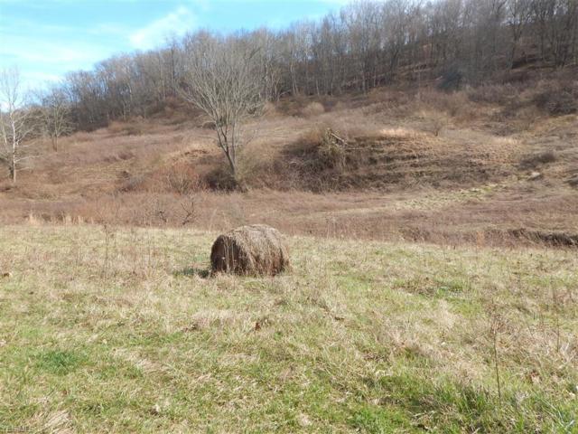 Tuckers Creek, Elizabeth, WV 26143 (MLS #4062812) :: RE/MAX Edge Realty