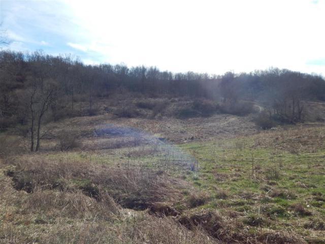 Tuckers Creek, Elizabeth, WV 26143 (MLS #4062820) :: RE/MAX Edge Realty