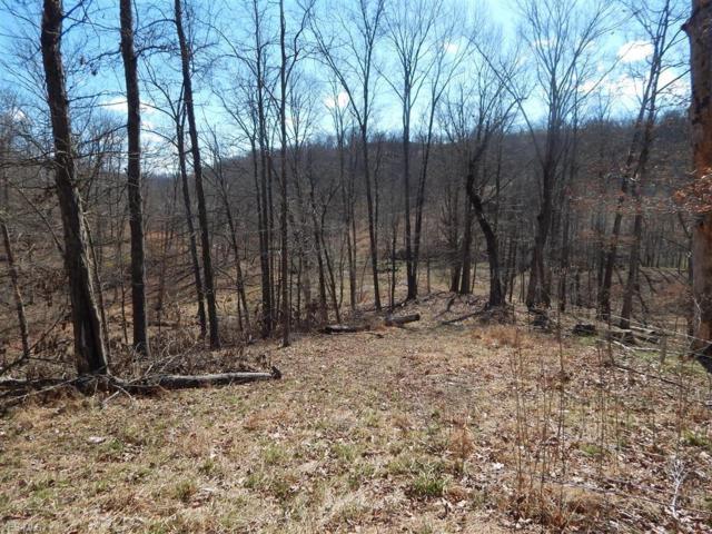 Tuckers Creek, Elizabeth, WV 26143 (MLS #4062836) :: RE/MAX Edge Realty