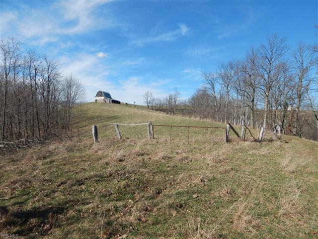 Tuckers Creek, Elizabeth, WV 26143 (MLS #4062852) :: RE/MAX Edge Realty