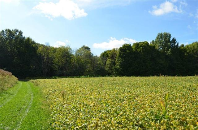 229 Parcel C New Milford Rd, Atwater, OH 44201 (MLS #4063805) :: RE/MAX Edge Realty