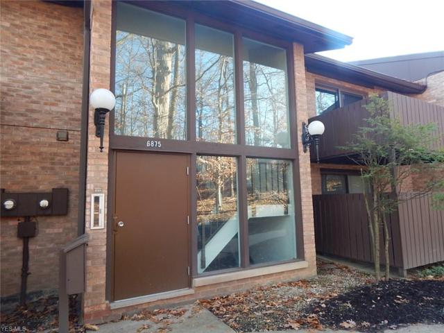 6875 Carriage Hill Dr E61, Brecksville, OH 44141 (MLS #4064559) :: RE/MAX Valley Real Estate