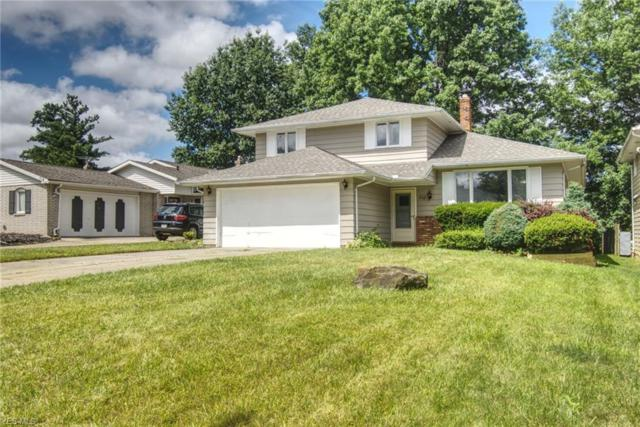 710 Anthony St, Richmond Heights, OH 44143 (MLS #4064602) :: RE/MAX Edge Realty