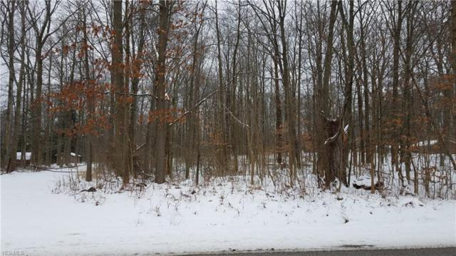 Holzhauer Road, Sagamore Hills, OH 44067 (MLS #4064635) :: RE/MAX Edge Realty