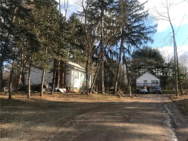 4666 State Route 43, Kent, OH 44240 (MLS #4064703) :: Keller Williams Chervenic Realty