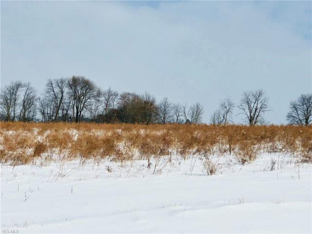 Riffle Rd, Wooster, OH 44691 (MLS #4064862) :: RE/MAX Edge Realty