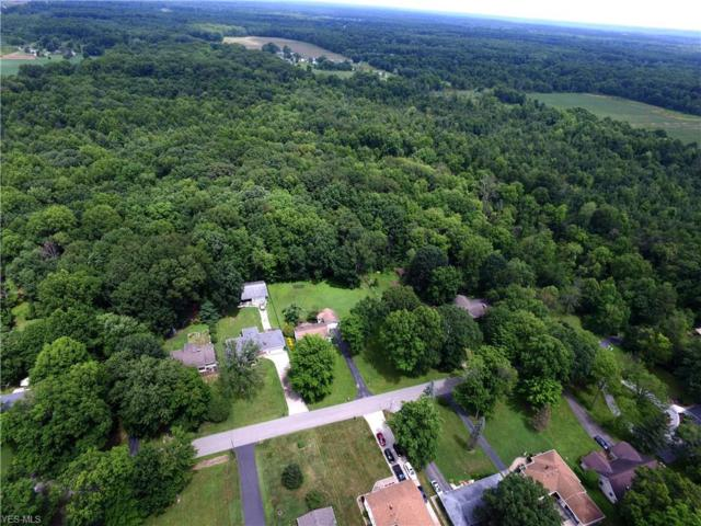 0 Miles, Champion, OH 44483 (MLS #4064988) :: RE/MAX Edge Realty