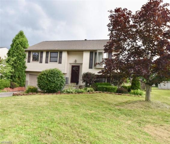 5628 Tulane Ave, Austintown, OH 44515 (MLS #4065163) :: RE/MAX Valley Real Estate