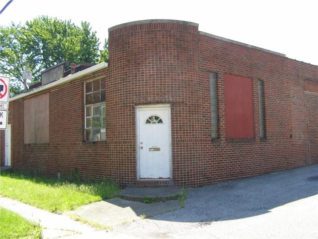 300 Winckles St, Elyria, OH 44035 (MLS #4065579) :: RE/MAX Edge Realty