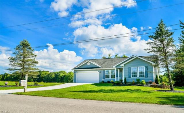 1810 Callender, Roaming Shores, OH 44084 (MLS #4066085) :: RE/MAX Valley Real Estate