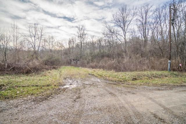 Side Zion Road Tr 171, Rutland, OH 45775 (MLS #4066228) :: RE/MAX Edge Realty