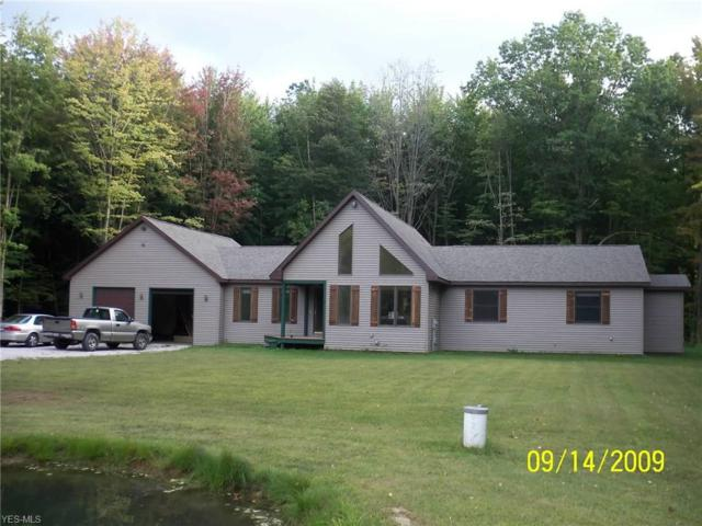 1038 Holcomb Rd, Jefferson, OH 44047 (MLS #4066608) :: RE/MAX Valley Real Estate