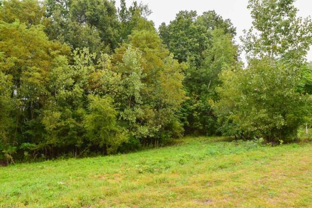 1103 Karla Dr, Clinton, OH 44216 (MLS #4066857) :: RE/MAX Edge Realty