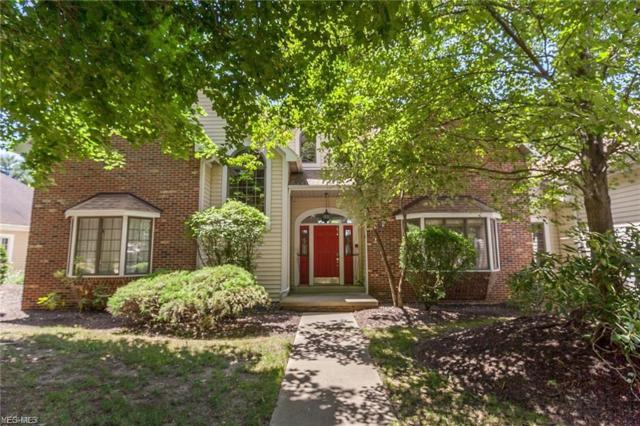 221 Lake Pointe Dr, Akron, OH 44333 (MLS #4067378) :: Ciano-Hendricks Realty Group