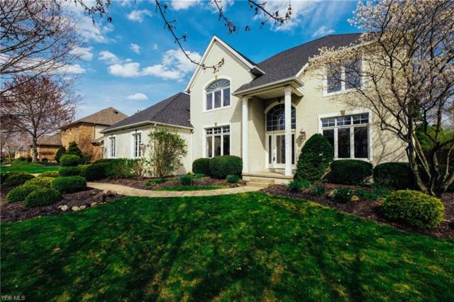 4946 Armandale Ave NW, Canton, OH 44718 (MLS #4067542) :: RE/MAX Valley Real Estate