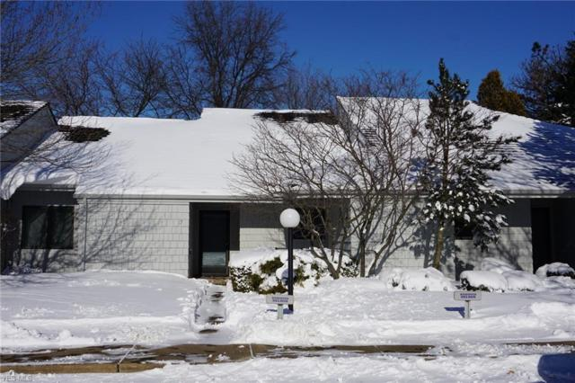 17 Sawmill Creek Dr W, Huron, OH 44839 (MLS #4068727) :: Ciano-Hendricks Realty Group