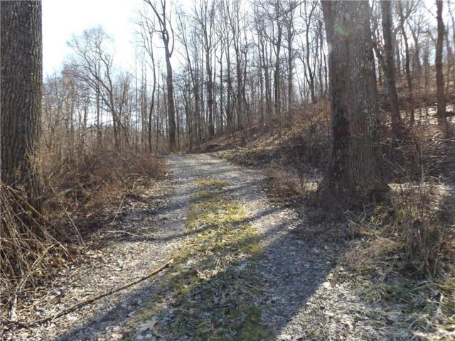 Buckeye Hollow Rd SE, Uhrichsville, OH 44683 (MLS #4068990) :: The Crockett Team, Howard Hanna