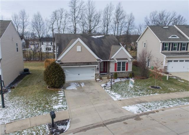 9006 Moss Pointe Cir, Olmsted Township, OH 44138 (MLS #4069153) :: RE/MAX Edge Realty