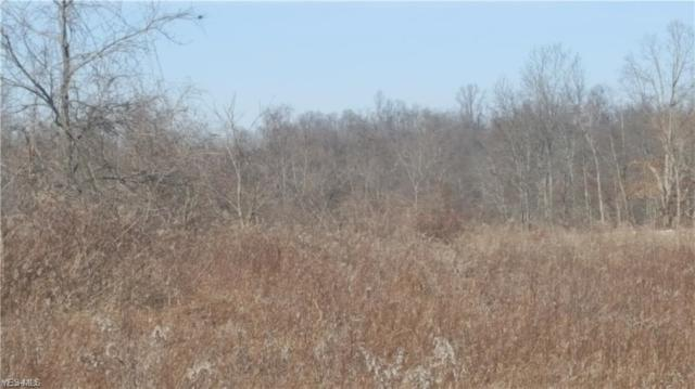 17065 Easton Rd, Salesville, OH 43778 (MLS #4069238) :: RE/MAX Edge Realty
