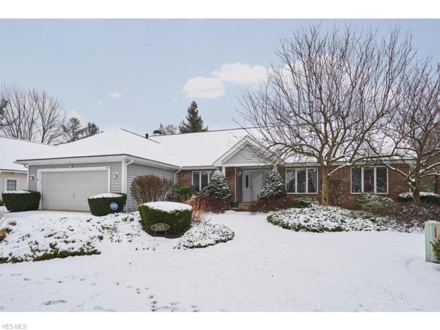243 Lake Pointe Dr, Bath, OH 44333 (MLS #4069411) :: RE/MAX Edge Realty