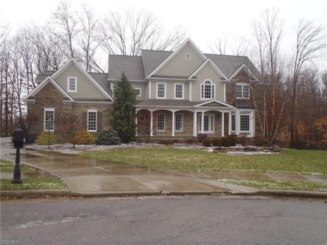 54 Timber Run Ct, Canfield, OH 44406 (MLS #4069555) :: RE/MAX Valley Real Estate