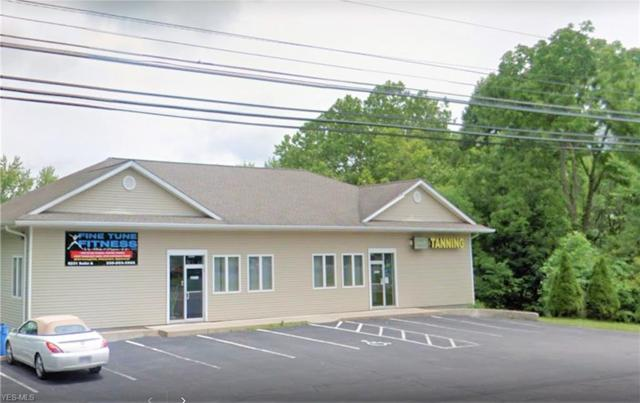 8231 Youngstown Pittsburgh Rd, Poland, OH 44514 (MLS #4069738) :: RE/MAX Valley Real Estate