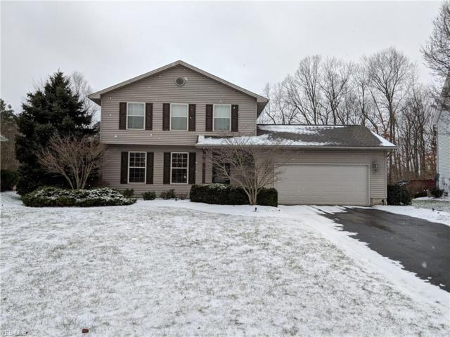 6933 Winterpark Ave, Austintown, OH 44515 (MLS #4069787) :: RE/MAX Valley Real Estate