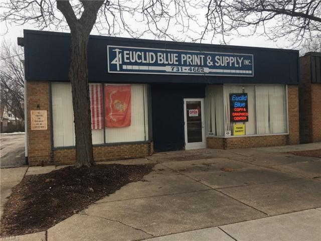 906 E 222nd St, Euclid, OH 44123 (MLS #4069889) :: RE/MAX Edge Realty