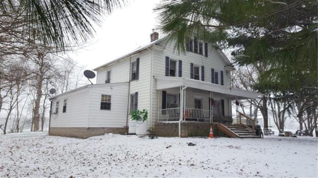 1253 Benton Rd, Salem, OH 44460 (MLS #4070328) :: RE/MAX Valley Real Estate