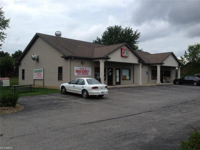 9056 N Lima Rd, Poland, OH 44514 (MLS #4070577) :: RE/MAX Valley Real Estate