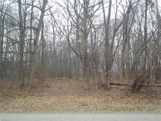Barnes Rd, Vermilion, OH 44089 (MLS #4070661) :: RE/MAX Edge Realty