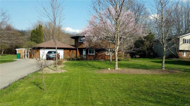 2799 Townline Rd, Madison, OH 44057 (MLS #4071431) :: RE/MAX Edge Realty
