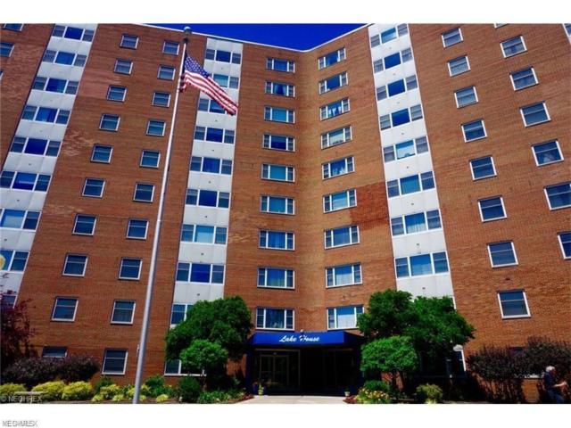 11850 Edgewater Dr #501, Lakewood, OH 44107 (MLS #4071828) :: Ciano-Hendricks Realty Group