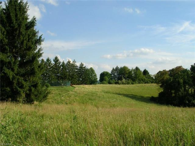 4901 Spruce Rise Rd, Parkersburg, WV 26104 (MLS #4072946) :: RE/MAX Valley Real Estate