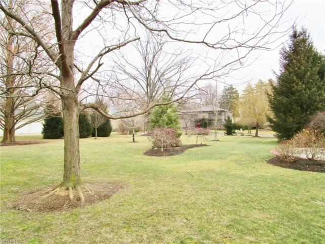 Lakehurst Dr, Bratenahl, OH 44108 (MLS #4073466) :: RE/MAX Valley Real Estate