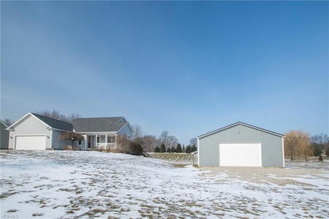 10911 Wolf Ave NE, Hartville, OH 44632 (MLS #4076286) :: RE/MAX Trends Realty
